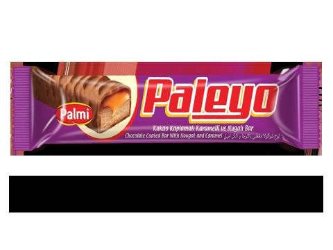 802 - Paleyo